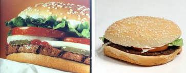 advertising-vs-reality-a-product-comparison-project-funtasticuscom-humor-fun-blog